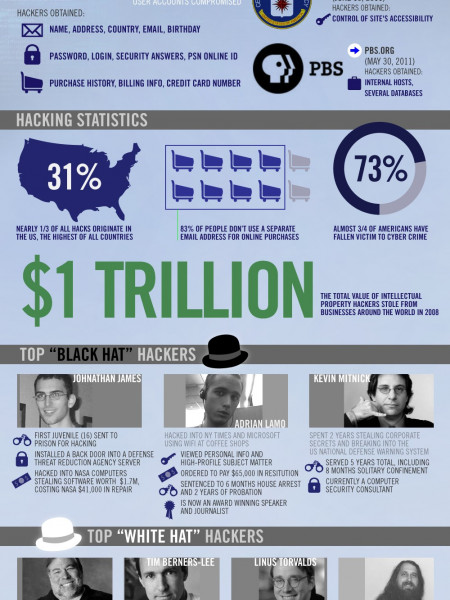 Hack Attack: Lulzsec Hacks and Security Stats Infographic