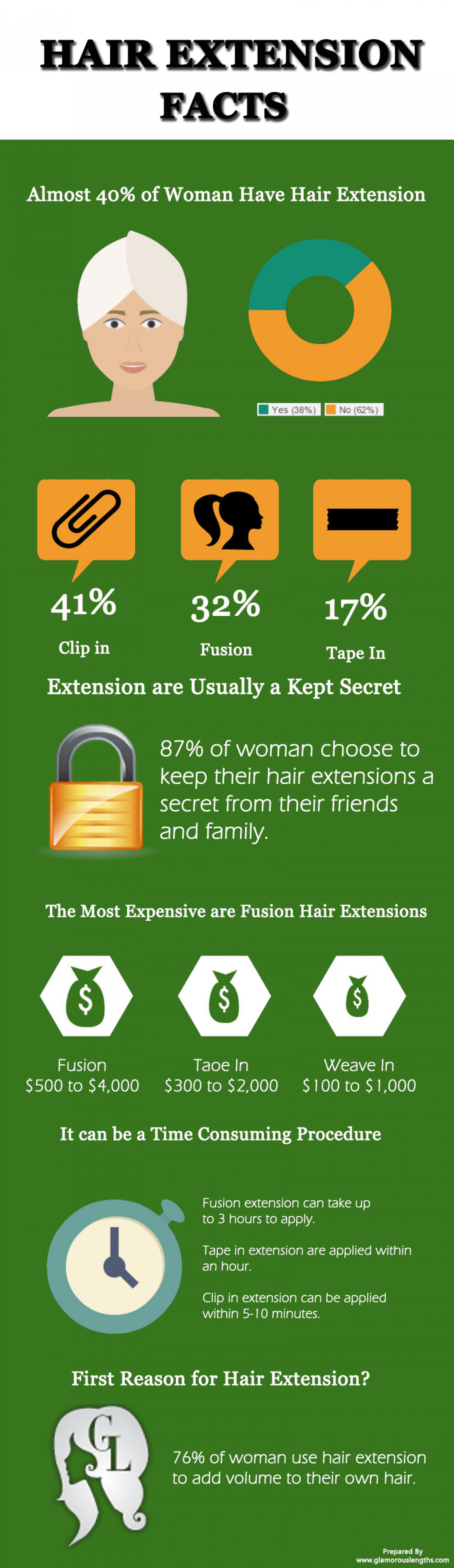 Hair Extensions Facts Infographics Visual