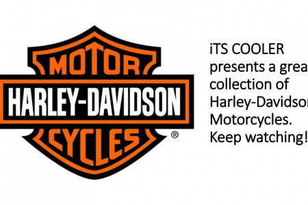 Harley Davidson Motorcycles Infographic