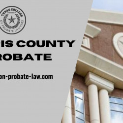 Harris County Probate - Houston-probate-law.com | Visual.ly