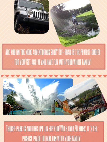 Have Fun In Surrey  Infographic