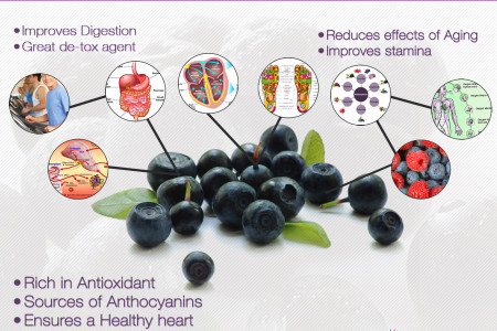 Health Benefits of Acai Berry Infographic