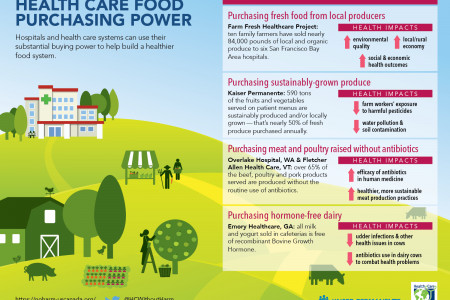 Health Care Food Purchasing Power Infographic