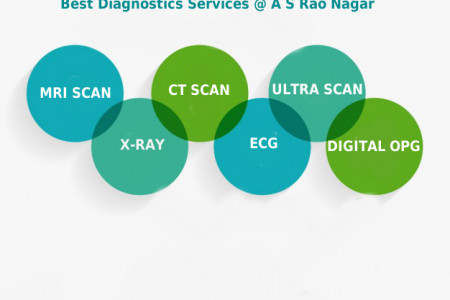 Health Diagnostics Services Infographic