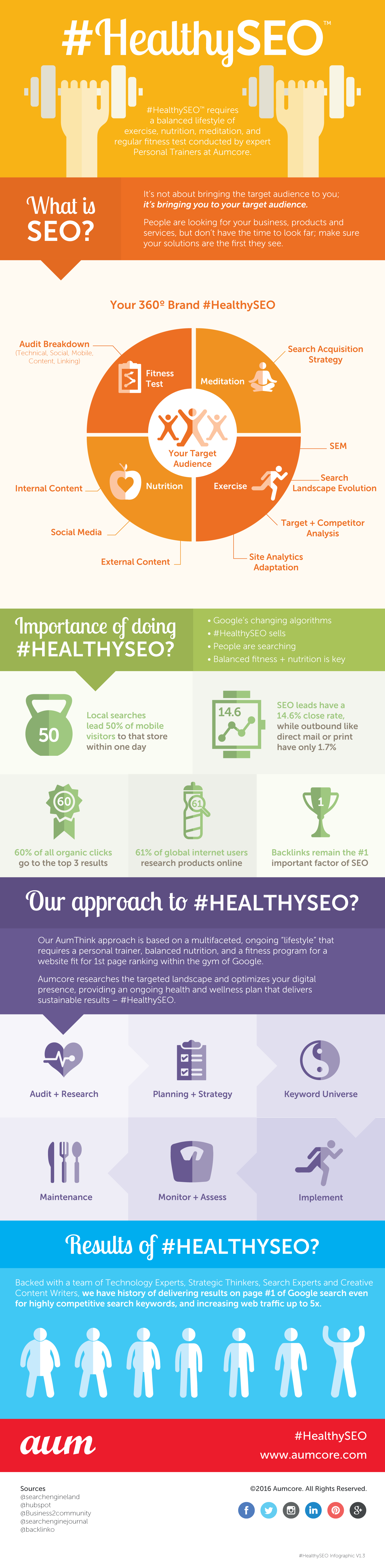 #HealthySEO - A Way To Keep your Website Healthy Infographic