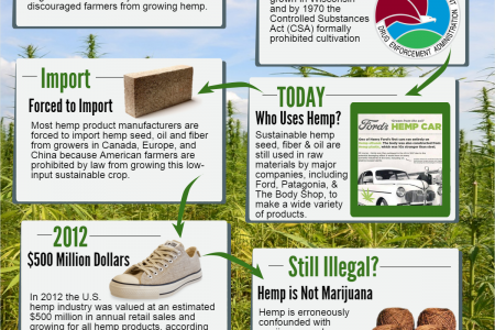 Hemp - The Little Crop that Could Infographic