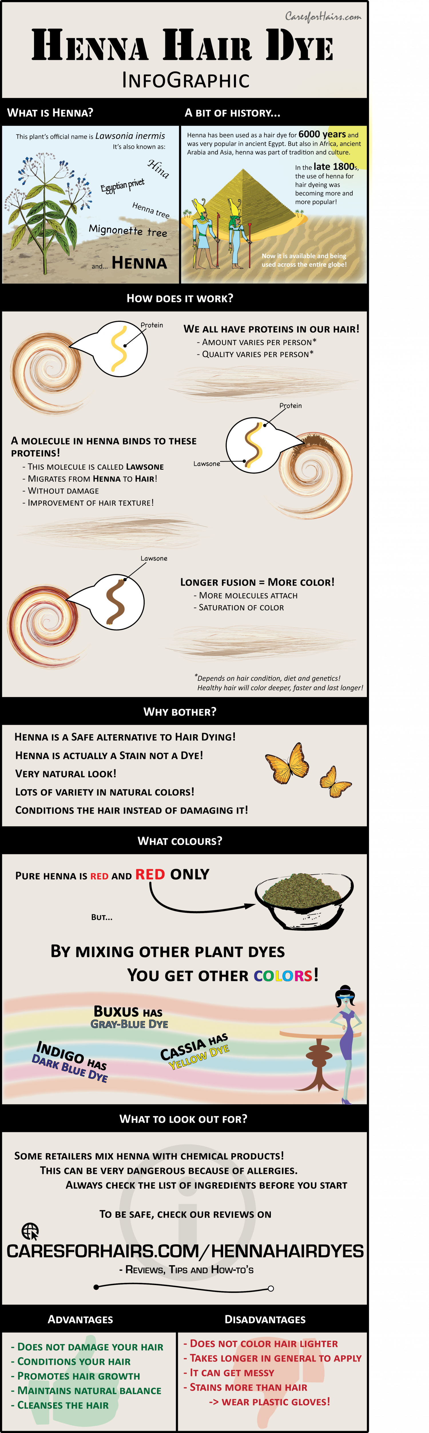Henna Hair Dye Infographic Infographic