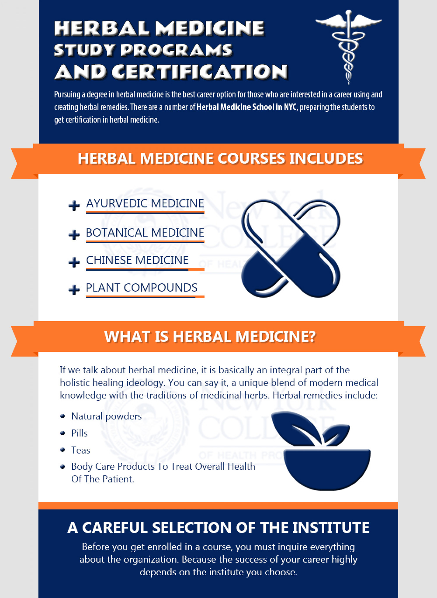Herbal Medicine Study Programs And Certification Infographic