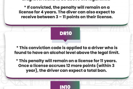 High Risk Conviction Codes  Infographic