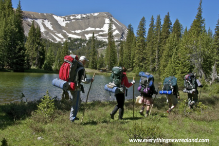 Hiking Tours & Guided Walks Infographic
