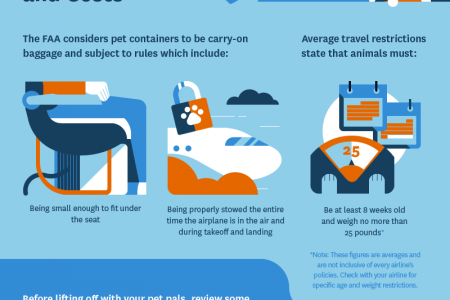 Hip Tips for Traveling With Pets Infographic