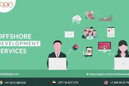 Hire offshore software developer Infographic