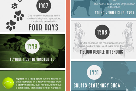 History Of Crufts - Where Did It All Begin? Infographic