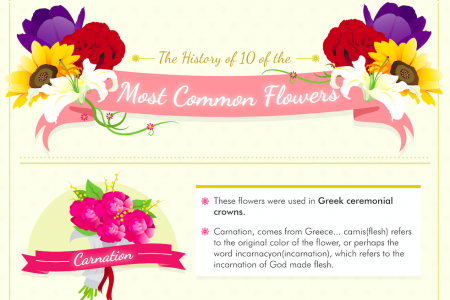 History of the 10 Most Common Flowers Infographic