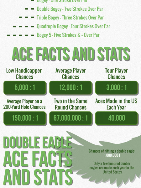 Hole-In-One Facts And Statistics Infographic