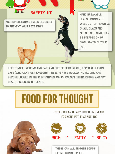 Holiday Hazards and Pet Safety Infographic