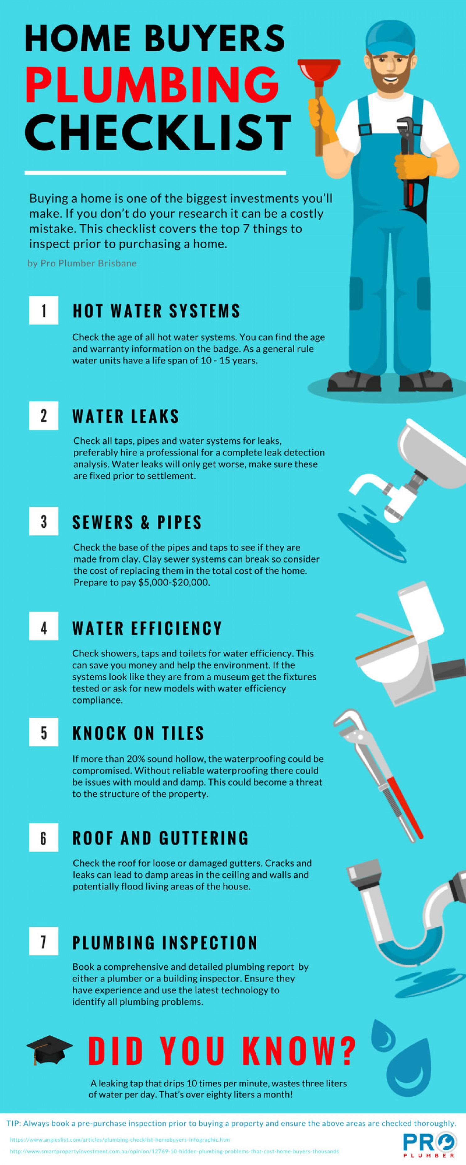 Home Buyers Plumbing Checklist Infographic