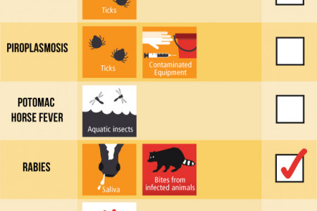 Horses and Infectious Disease Infographic