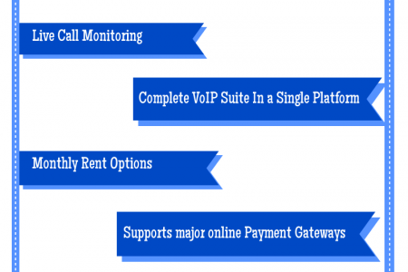 Hosted VoIP Softswitch - REVE System  Infographic