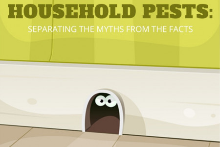Household Pests: Separating the Myths from the Facts Infographic