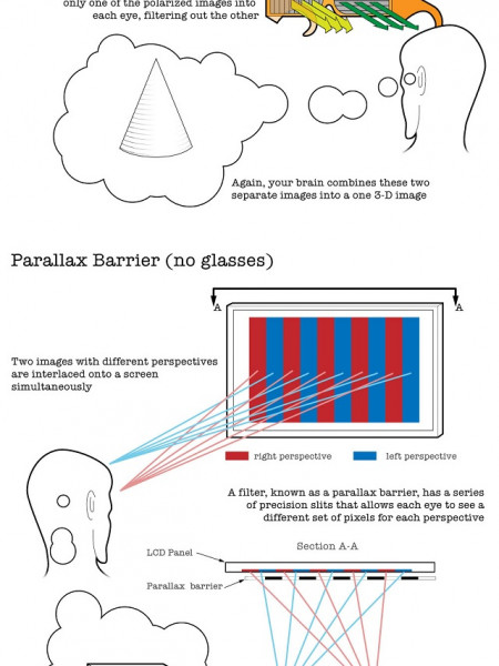 How 3D Works Infographic