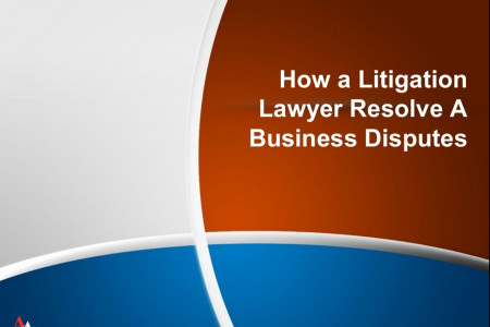 How a Litigation Lawyer Resolve A Business Disputes Infographic
