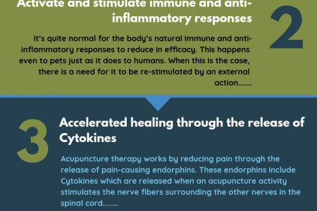 How Acupuncture Therapy Works On The Pet's Health And Wellness Infographic