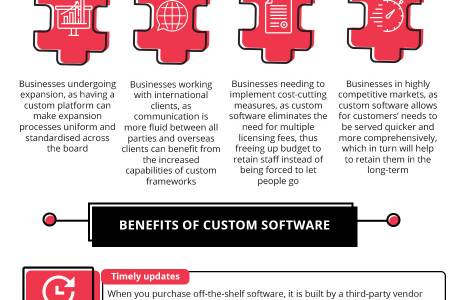 : How Businesses Can Benefit from Custom Software Solutions [Visual asset]  Infographic