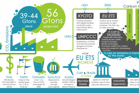 How Carbon Credits Work Infographic