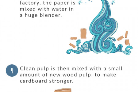 How Cardboard Is Recycled  Infographic