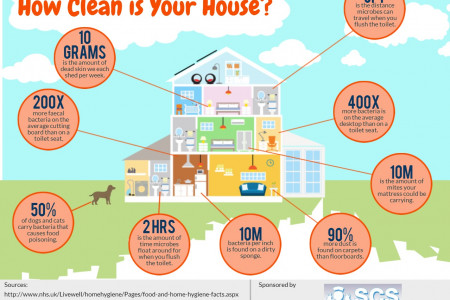 How Clean is Your House? Infographic