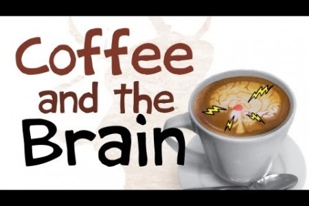 How Coffee Affects Your Brain Infographic