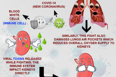 How COVID-19 Causes Acute Kidney failure Infographic