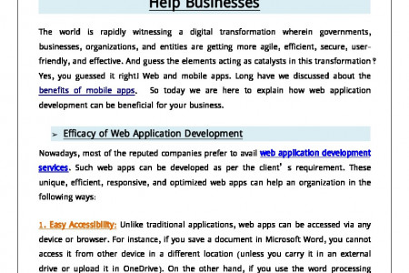 How Custom Web Application Development Can Help Businesses Infographic
