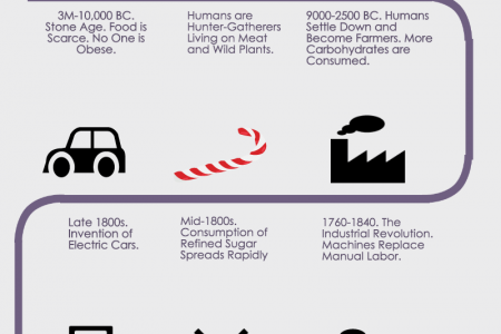 How Did We Become So Large? – From Stone Age to Biggest Loser Infographic