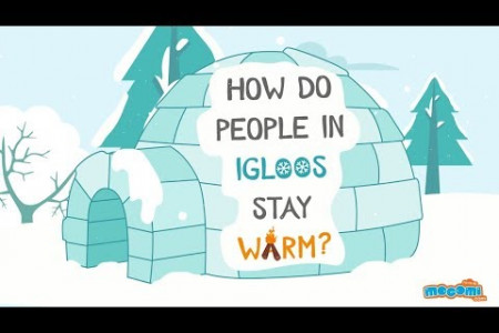 How do people in Igloos stay warm? Infographic