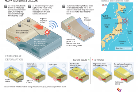 How Does a Tsunami Occur?  Infographic