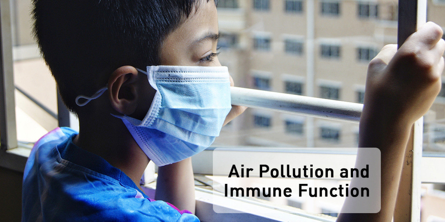 How Does Air Pollution Affect Our Immune System? Infographic