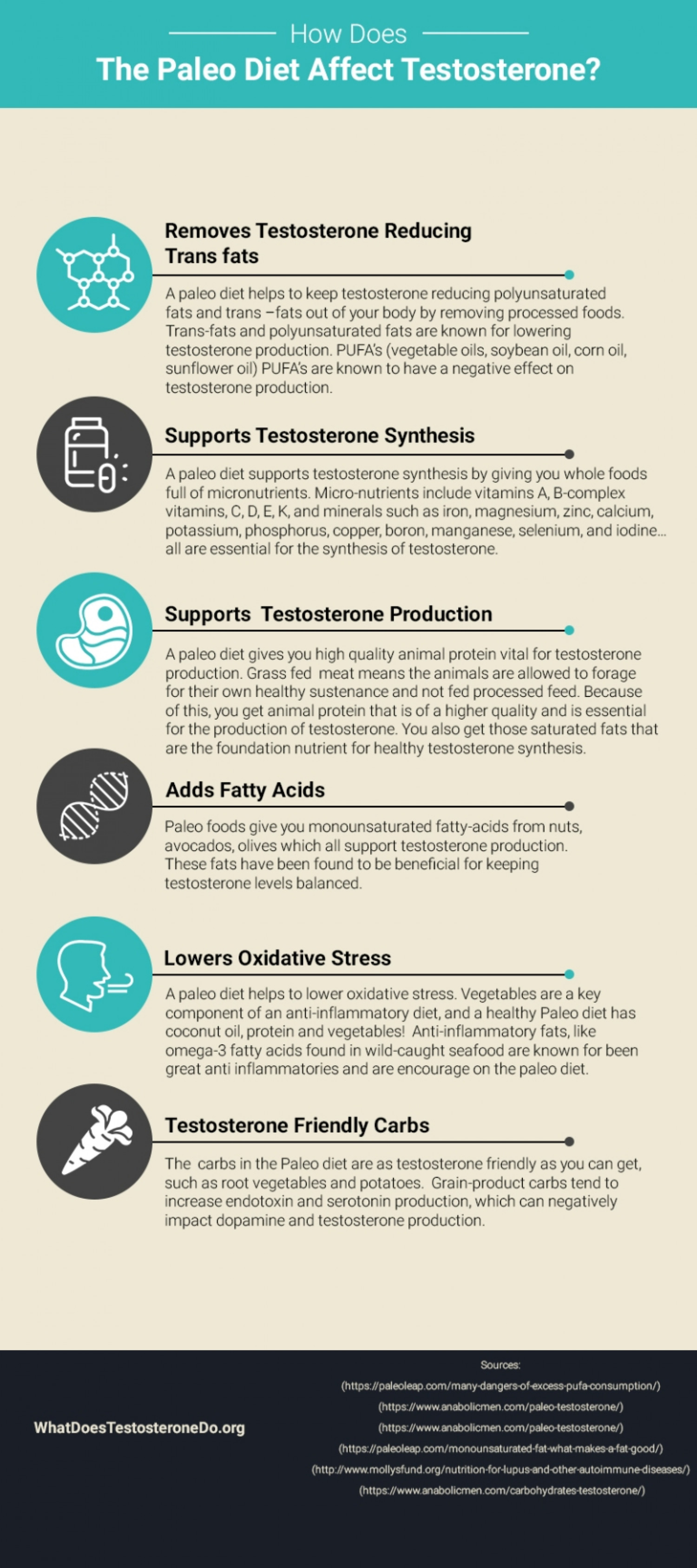 How Does The Paleo Diet Affect Testosterone? Infographic