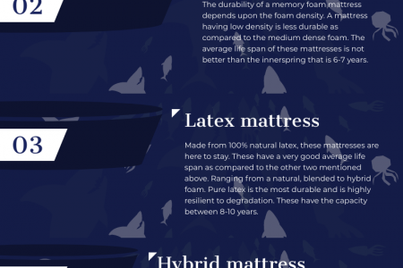 How durable your mattress is? Infographic
