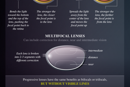How Eyeglasses Work Infographic