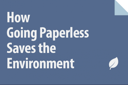 How Going Paperless Saves the Environment Infographic