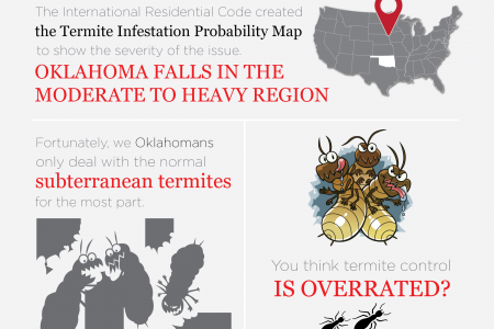 How Important is Termite Control in Oklahoma? Infographic