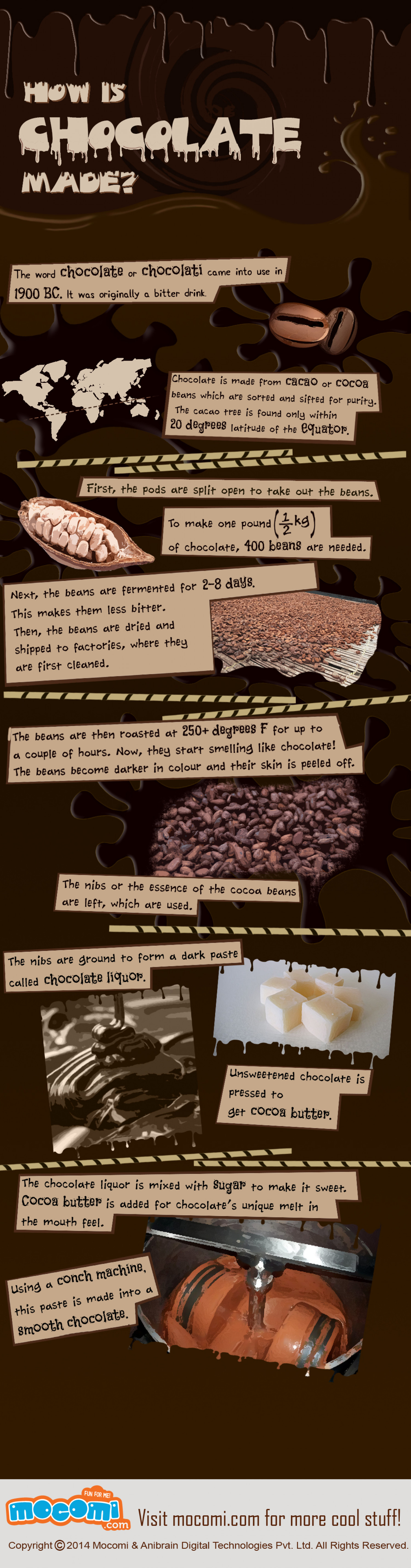 How is Chocolate made? Infographic