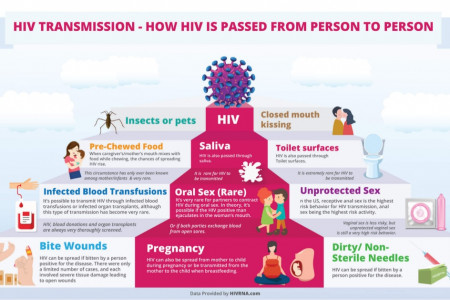 How is HIV Transmitted between People? Infographic