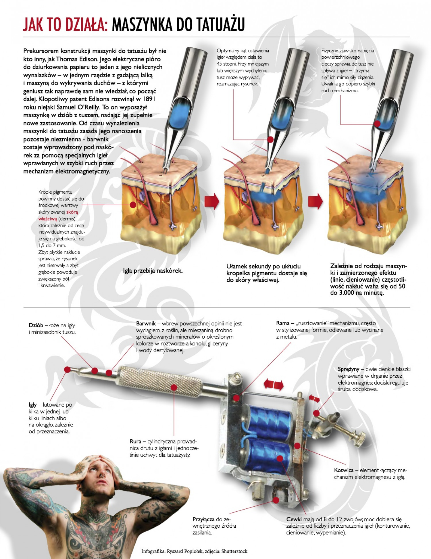 How it works: Tattoo machine | Visual.ly