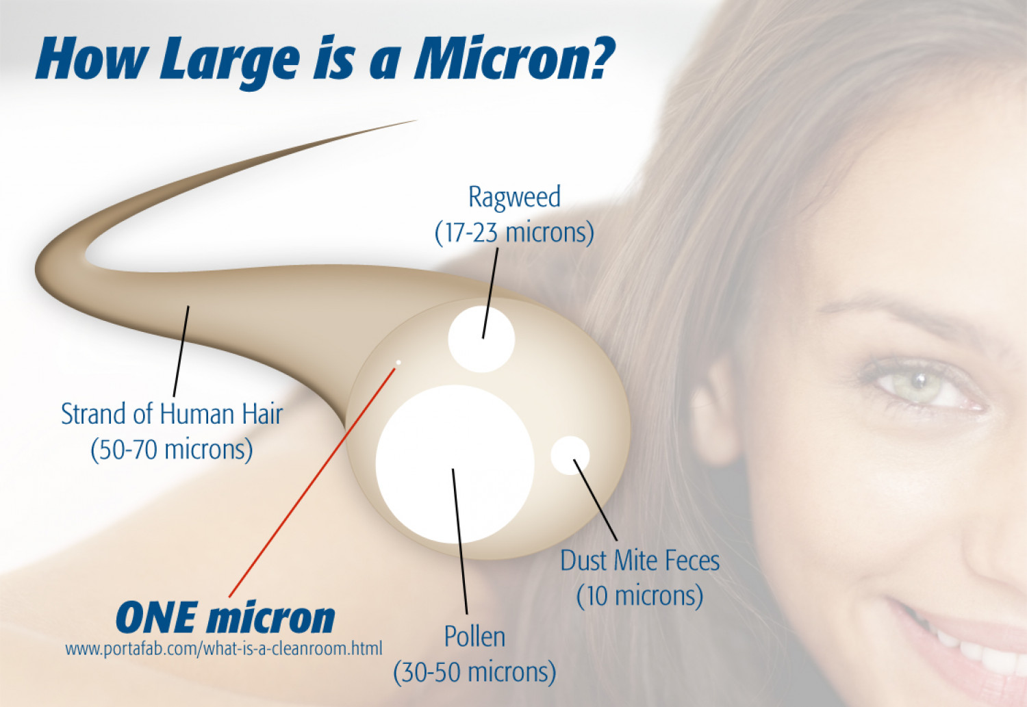 How Large is a Micron? Infographic