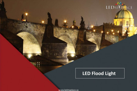How LED Flood Lights ensure the safety at your Outdoor Infographic