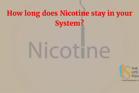 How long does nicotine stay in your system? Infographic