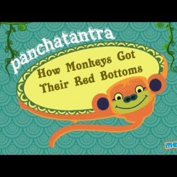How Monkeys Got Their Red Bottoms - Panchatantra Stories for Kids